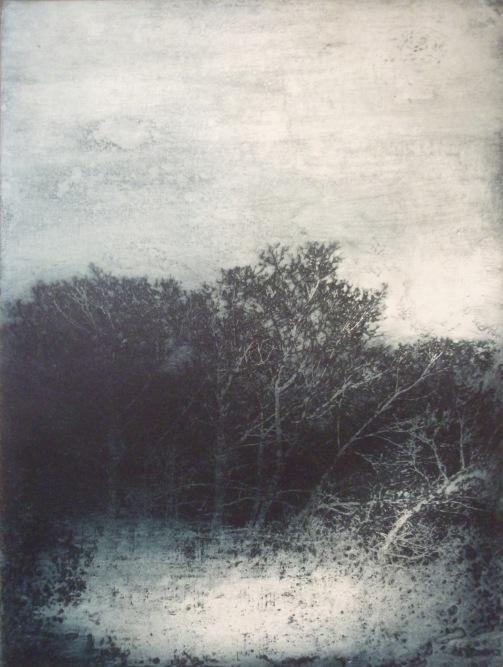 La disparition des lucioles, 40 x 50 cm