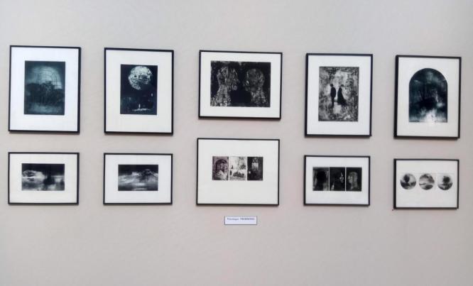 Screenshot_2019-11-11 Album photo - ExpoOrangerie du Senat_2019 pdf(3)